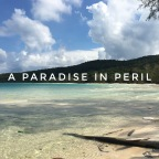 Koh Rong Sanloem, Cambodia: A paradise in peril